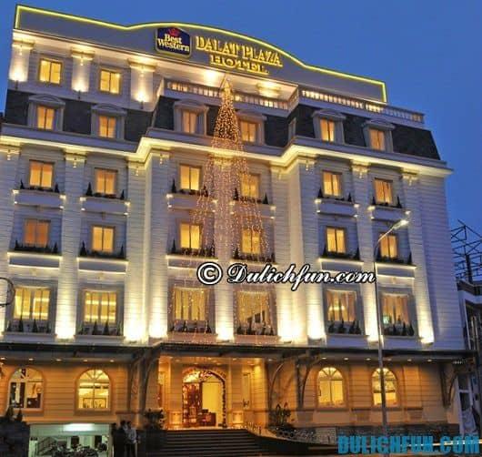 Cẩm nang du lịch Lâm Đồng toàn tập: kinh nghiệm chọn nhà nghỉ, khách sạn chất lượng khi du lịch Lâm Đồng