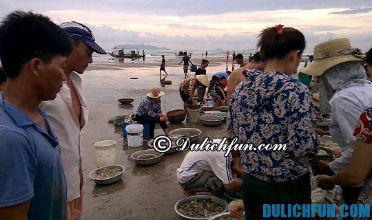 Chợ mua bán hải sản tươi ngon ven biển Đà Nẵng