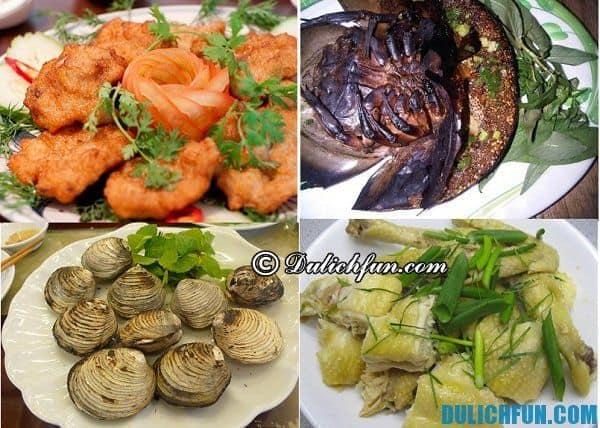Đặc sản Quảng Ninh đa dạng phong phú như chả mực Hạ Long, sam, ngán, gà Tiên Yên nhiều những món ăn hấp dẫn nên thưởng thức
