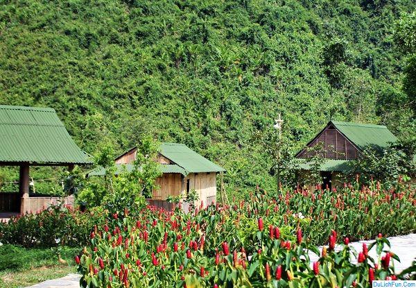 Địa điểm du lịch giá rẻ ở Đà Nẵng: Du lịch Đà Nẵng nên đi đâu chơi, tham quan?