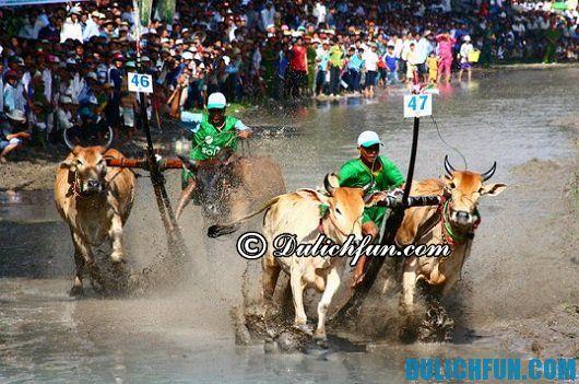 Du lịch An Giang mùa lễ hội: những lễ hội nỏi tiếng ở An Giang