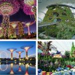 Gardens by the Bay điểm vui chơi giải trí hấp dẫn tại Singapore. Kinh nghiệm du lịch Singapore hấp dẫn lý thú