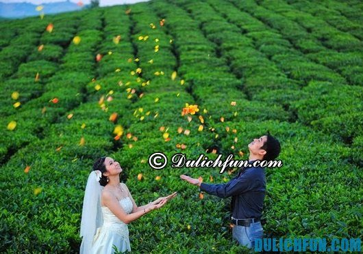 Hướng dẫn hành trình du lịch Sơn La vào mùa thu: địa điểm chụp ảnh cưới đẹp ở Sơn La
