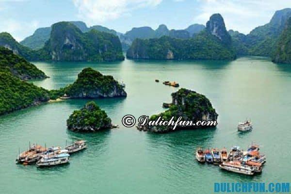 Kinh nghiệm du lịch Hạ Long đầy đủ nhất, bao gồm địa điểm, đặc sản, di chuyển, khách sạn rất chi tiết