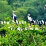 Kinh nghiệm du lịch Thung Nham bổ ích, kỳ thú với vẻ đẹp nguyên sơ tự nhiên