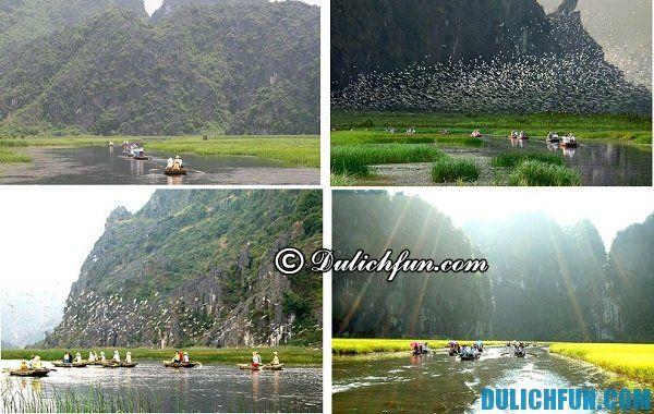 Đầm Vân Long điểm đến thu hút khách du lịch bởi thiên nhiên tươi đẹp, không khí trong lành, đa dạng sinh vật.
