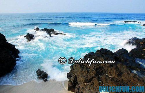 Khám phá những địa điểm du lịch đảo lý sơn cực đẹp không thể bỏ qua