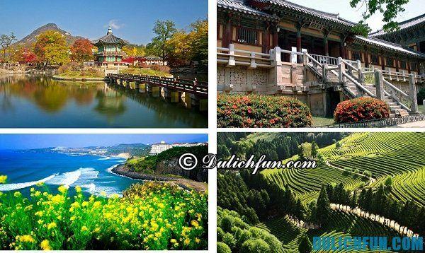 Kinh nghiệm du lịch Hàn Quốc tự túc, giá rẻ: Những địa danh du lịch nổi tiếng ở Hàn Quốc thu hút du khách ghé thăm như cánh đồng chè, vọng lâu, đảo Jeju, chùa chiền ...