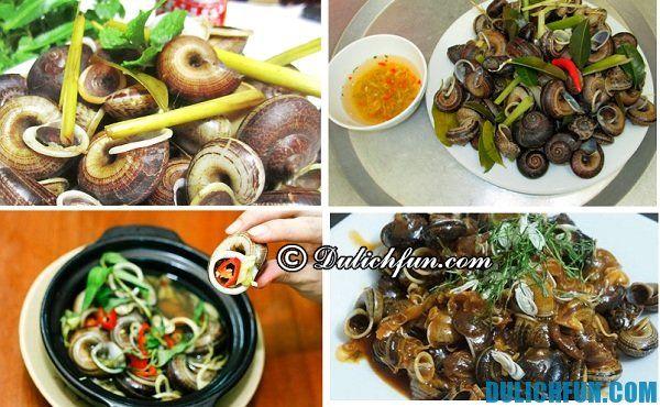 Món ốc núi Ninh Bình, món ngon được chế biến từ ốc núi tự nhiên, bổ dưỡng vì ốc núi chuyên ăn lá cay thuốc quý.