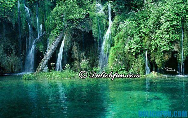 Rừng quốc gia Cúc Phương, rừng nguyên sinh thu hút khách du lịch trong và ngoài nước