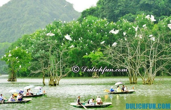 Vườn chim Thung Nham nơi bảo tồn và phát triển hơn 50 loài chim quý khác nhau. Nơi đây đang được tỉnh Ninh Bình đưa vào khai thác du lịch, khu du lịch sinh thái