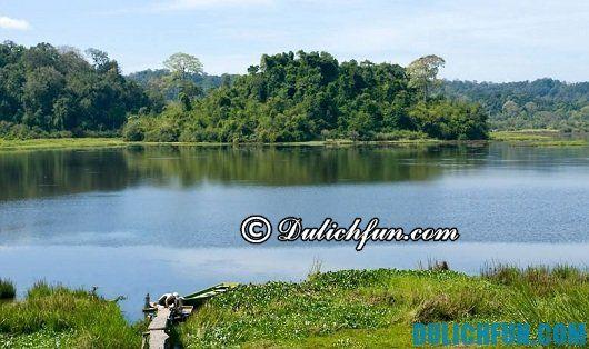 Tư vấn tour du lịch Đồng Nai: Địa điểm chụp ảnh đẹp ở Đồng Nai