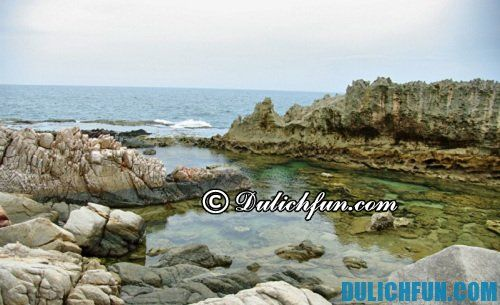 Địa điểm du lịch đẹp ở Ninh Thuận: Du lịch Hang Rái