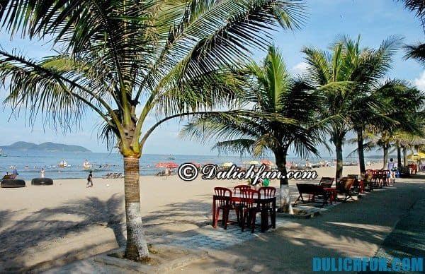 Bãi biển đẹp nhất Nghệ An: Kinh nghiệm du lịch Nghệ An chi tiết