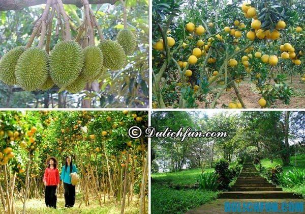 Địa điểm du lịch gần Sài Gòn 1 ngày