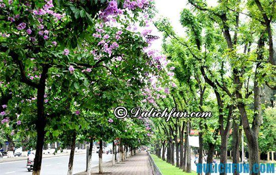 Điểm chụp ảnh đẹp nhất Hà Nội, con đường hoa Bằng Lằng.4 địa điểm chụp ảnh đẹp nhất Hà Nội không thể bỏ qua. Những địa điểm chụp ảnh ở Hà Nội đẹp, nổi ti
