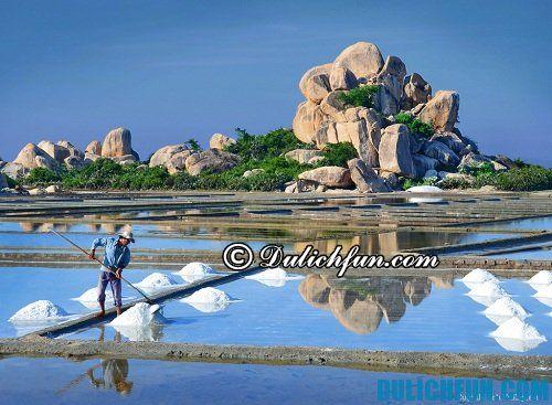 Kinh nghiệm du lịch Ninh Thuận vui vẻ, giá rẻ bất ngờ