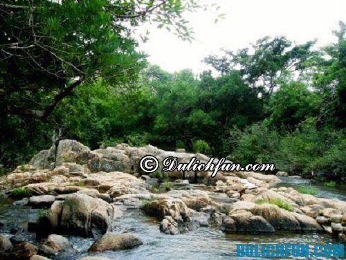 Kinh nghiệm du lịch Ninh Thuận: du lịch cắm trại ở Núi Chúa