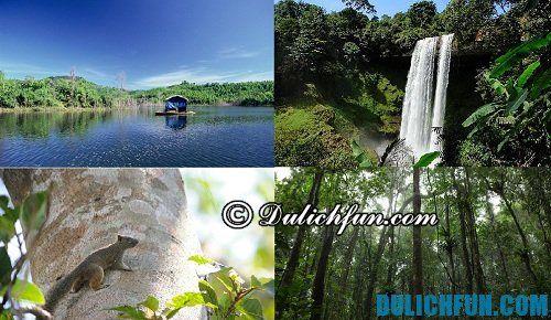 Những địa điểm đẹp nên đến ở Đắk Nông