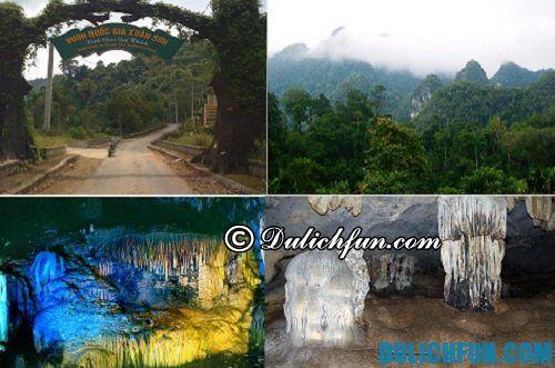 Hướng dẫn du lịch Phú Thọ: Du lịch vườn quốc gia Xuân Sơn