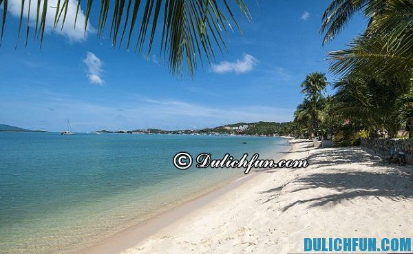 Bãi biển Chaweng trên đảo Koh Samui, kinh nghiệm du lịch đảo Koh Samui vui vẻ, tiết kiệm