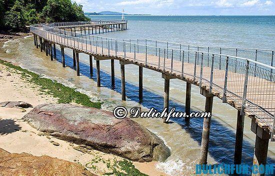 Đảo Chek Jawa, một trong những hòn đảo nổi tiếng ở Singapore. Các hòn đảo đẹp ở Singapore