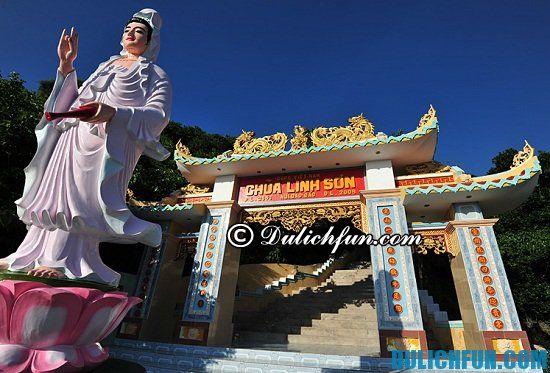 Địa điểm du lịch nổi tiếng ở đảo Phú Quý: hướng dẫn tour du lịch đảo Phú Quý giá rẻ