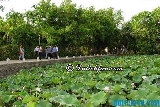 Điểm đến du lịch hấp dẫn ở Nghệ An: Nơi tham quan ngắm cảnh đẹp ở Nghệ An