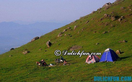 Đồng Mô địa điểm cắm trại đẹp gần Hà Nội: Nơi cắm trại lý tưởng ở Hà Nội