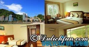 Khách sạn ở Cát Bà vị trí đẹp, dịch vụ tốt, sạch sẽ, tin cậy