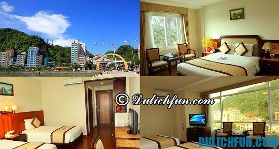 Khách sạn ở Cát Bà gần biển, thuận tiện đi lại: Tư vấn nơi nghỉ dưỡng khi đến Cát Bà du lịch
