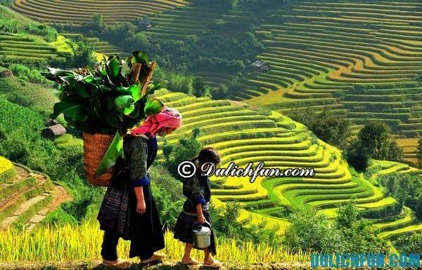 Kinh nghiệm du lịch bản làng Sapa