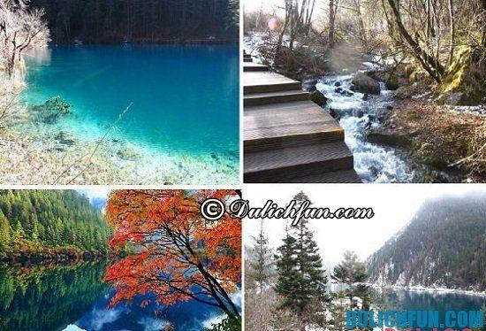 Du lịch Cửu Trại Câu nên đi đâu? Chia sẻ kinh nghiệm du lịch Cửu Trại Câu bốn mùa trong năm