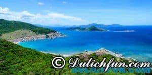 Kinh nghiệm du lịch đảo Bình Hưng tổng hợp đầy đủ nhất- Du lịch đảo Bình Hưng tiết kiệm, vui vẻ
