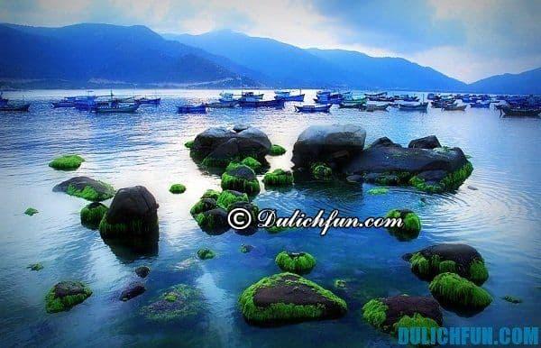 Kinh nghiệm du lịch Bình Hưng - tư vấn lịch trình du lịch đảo Bình Hưng vui vẻ, tiết kiệm