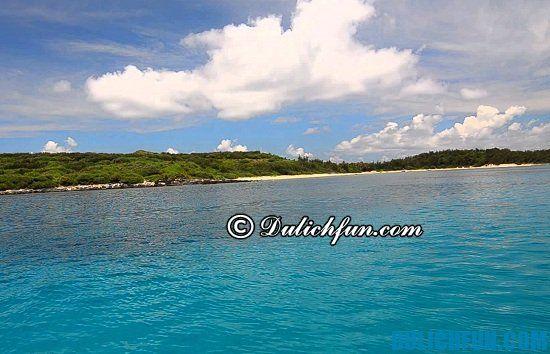 Kinh nghiệm du lịch đảo Phú Quý tổng hợp: chia sẻ bí quyết khám phá đảo Phú Quý