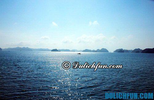 Thời gian nào nên đi du lịch đảo Ngọc Vừng. Chia sẻ một số kinh nghiệm du lịch đảo Ngọc Vừng