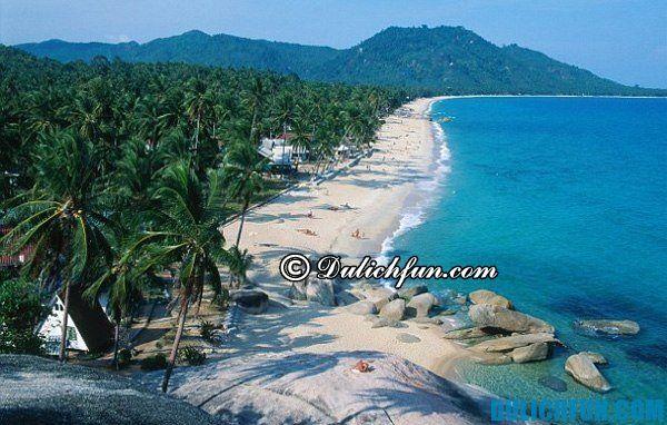 Làng dừa Koh Samui, tư vấn hướng dẫn du lịch đảo Koh Samui Thái Lan