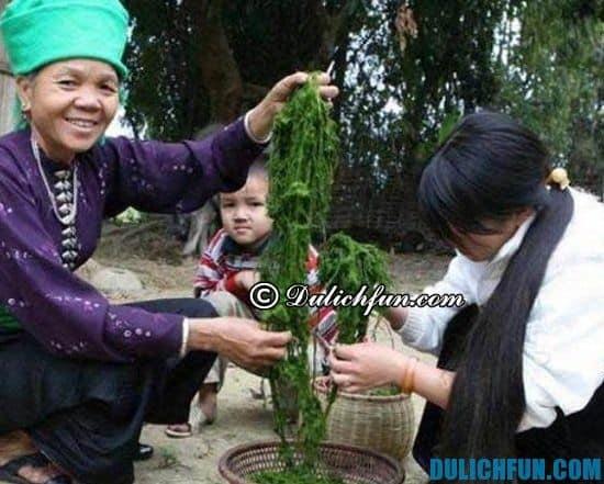 Món ăn truyền thống ở Điện Biên: thực phẩm thơm ngon bổ dưỡng ở Điện Biên