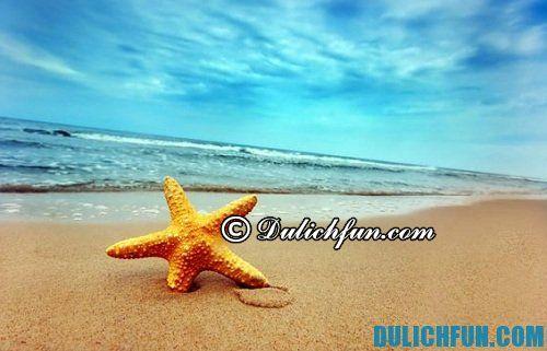Những bãi biển đẹp nhất ở Việt nam