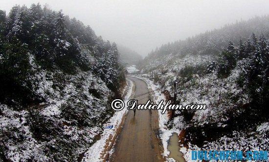 Điểm ngắm tuyết rơi đẹp ở Việt Nam không nên bỏ lỡ: những nơi có tuyết rơi trắng xóa ở Việt Nam