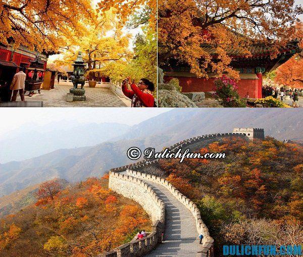 Kinh nghiệm du lịch Bắc Kinh. Thời điểm thích hợp nhất để du lịch Bắc Kinh.