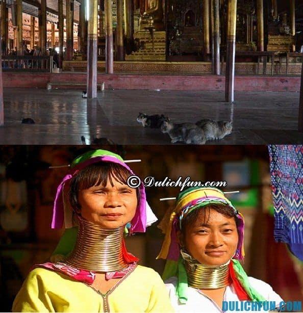 Những điểm tham quan nổi tiếng ở Inle. Kinh nghiệm du lịch hồ Inle, Myanmar tự túc tiết kiệm