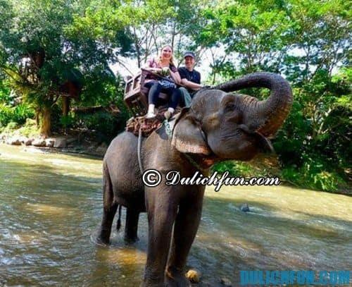Kinh nghiệm du lịch Chiang Mai: những địa điểm du lịch đẹp, mới lạ ở Chiang Mai