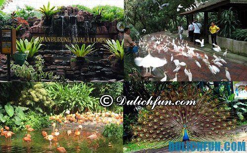 Top 6 địa điểm du lịch ở Kuala Lumpur hấp dẫn, lý tưởng