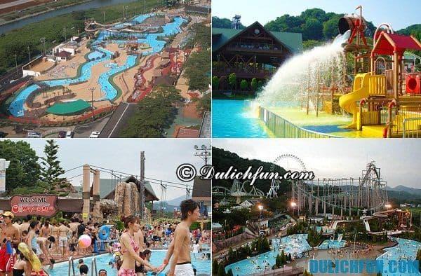Công viên nước hàng đầu Nhật Bản. Khu công viên vui chơi giải trí nổi tiếng ở Tokyo