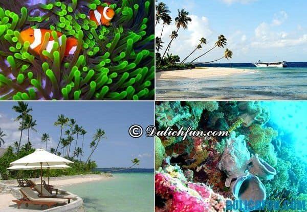 Hòn đảo đẹp nhất Indonesia. Du lịch đảo nào ở Indonesia thích hợp nhất? Những hòn đảo nghỉ dưỡng tươi đẹp ở Indonesia