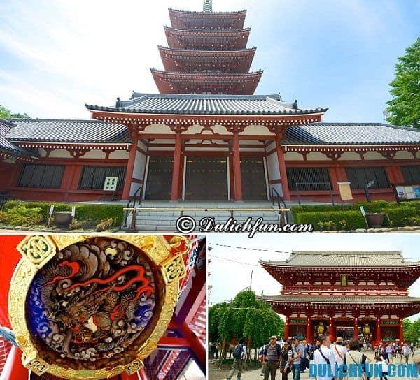 Điểm tham quan đáng tới ở Tokyo: Nên đi chơi đâu khi đến Tokyo, Tokyo có địa điểm du lịch nào hấp dẫn