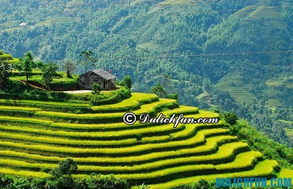 Ăn gì ngon khi du lịch Hà Giang?