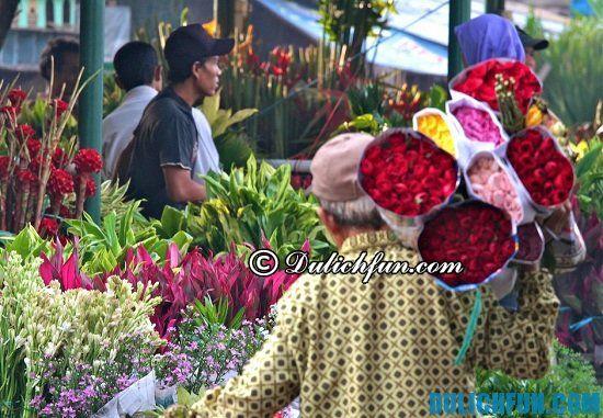 Chợ hoa Pasar Rawa Belong, một trong những địa điểm mua sắm thú vị, hấp dẫn ở Jakarta